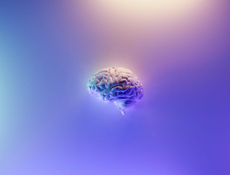 The Brain's Response to Trauma